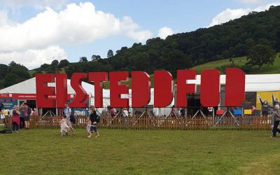 Gwe Cambrian Web at the National Eisteddfod
